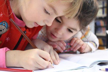 Der Bildungsföderalismus ist ein Garant für Ausbildungsqualität und Demokratie
