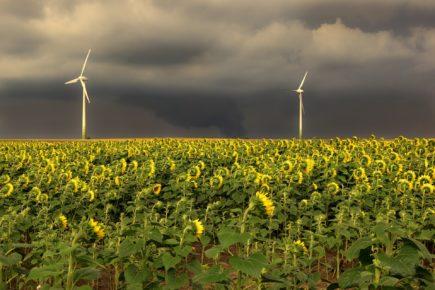 """Die Energiewende – wenn das """"gute Gefühl"""" mehr zählt als Vernunft und Verstand"""